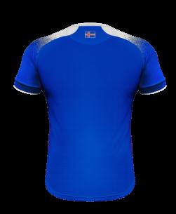Errea IJsland Thuisshirt WK2018 achterkant