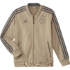 adidas Ajax Trainingsjack 2018-2019 Kids Raw Gold Carbon