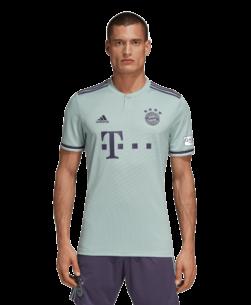 adidas Bayern München Uitshirt 2018-2019 Ash Green voorkant