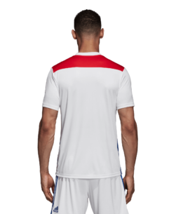 adidas Olympique Lyon Thuisshirt 2018-2019 achterkant