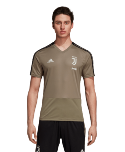 adidas Juventus Trainingsshirt 2018-2019 Clay Black voorkant