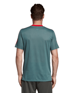 adidas Bayern München Trainingsshirt 2018-2019 Raw Green Red achterkant