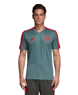 adidas Bayern München Trainingsshirt 2018-2019 Raw Green Red