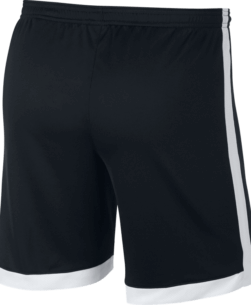 Nike Dri-FIT Academy Trainingsshort