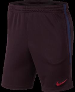 Nike FC Barcelona Strike Short 2019-2020